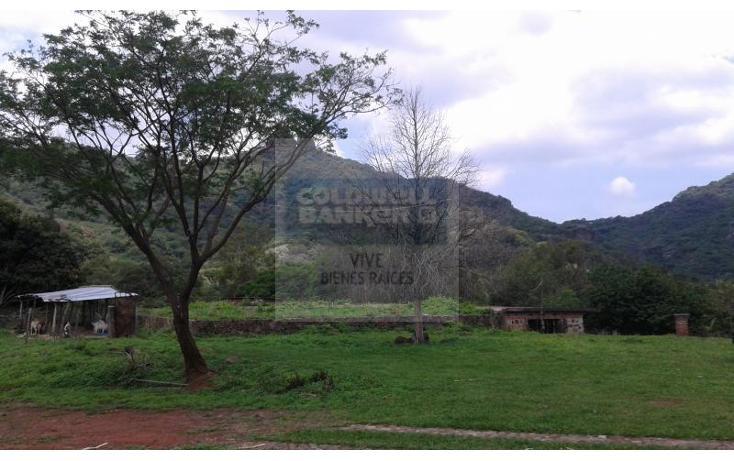 Foto de terreno habitacional en venta en  1, san josé, tepoztlán, morelos, 1028979 No. 07