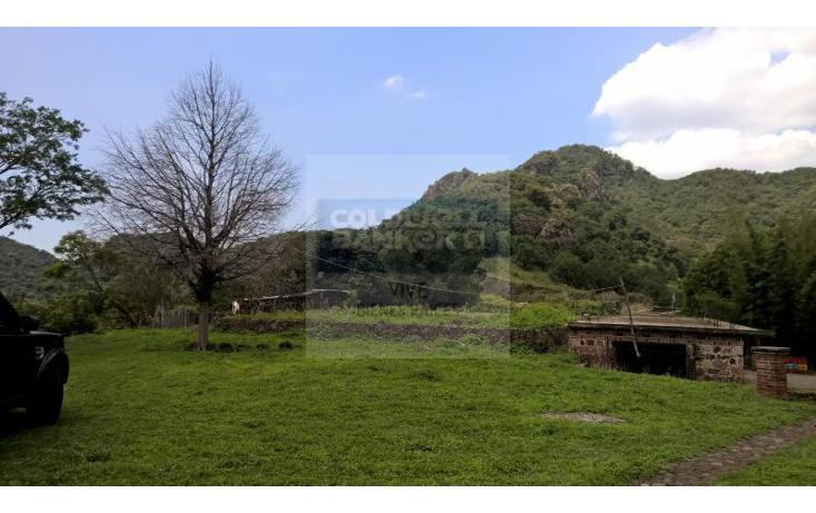 Foto de terreno habitacional en venta en  1, san josé, tepoztlán, morelos, 1028979 No. 11