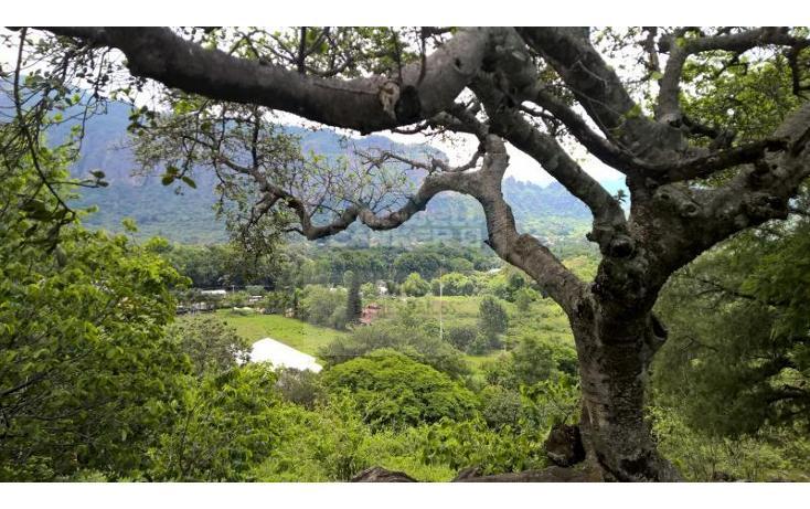 Foto de terreno habitacional en venta en  1, san josé, tepoztlán, morelos, 1028979 No. 14