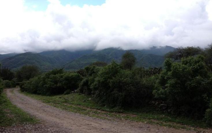 Foto de rancho en venta en  1, techaluta, techaluta de montenegro, jalisco, 418338 No. 09