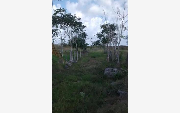 Foto de terreno industrial en venta en  1, tekanto, tekant?, yucat?n, 1986698 No. 17