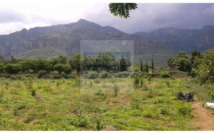 Foto de terreno habitacional en venta en  1, tepoztlán centro, tepoztlán, morelos, 1028995 No. 02