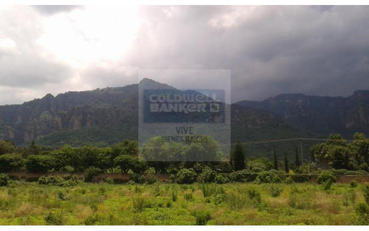 Foto de terreno habitacional en venta en  1, tepoztlán centro, tepoztlán, morelos, 1028995 No. 05
