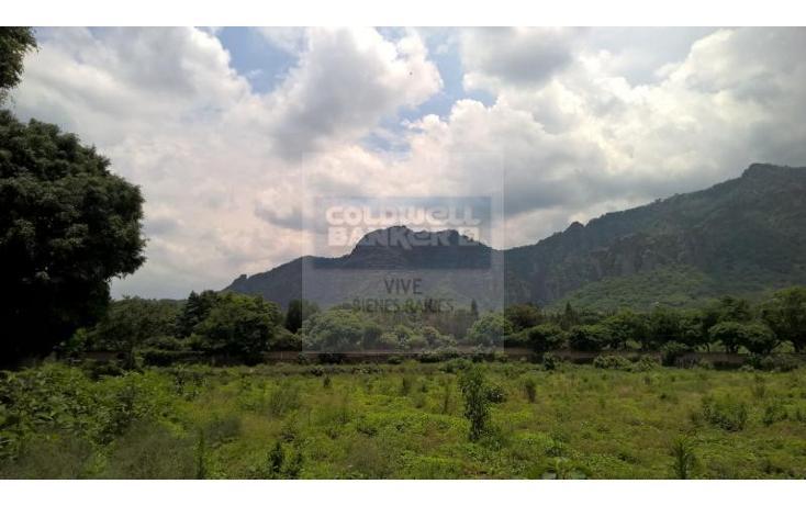 Foto de terreno habitacional en venta en  1, tepoztlán centro, tepoztlán, morelos, 1028995 No. 12