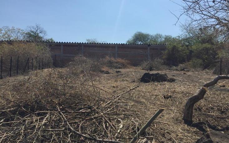 Foto de terreno habitacional en venta en  1, tequesquitengo, jojutla, morelos, 906509 No. 02