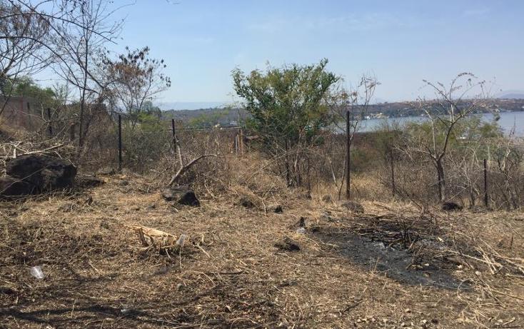 Foto de terreno habitacional en venta en  1, tequesquitengo, jojutla, morelos, 906509 No. 04