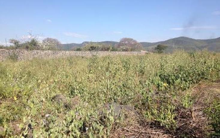 Foto de terreno habitacional en venta en  1, tezoyuca, emiliano zapata, morelos, 1544200 No. 02