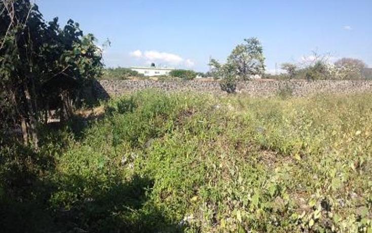 Foto de terreno habitacional en venta en  1, tezoyuca, emiliano zapata, morelos, 1544200 No. 04
