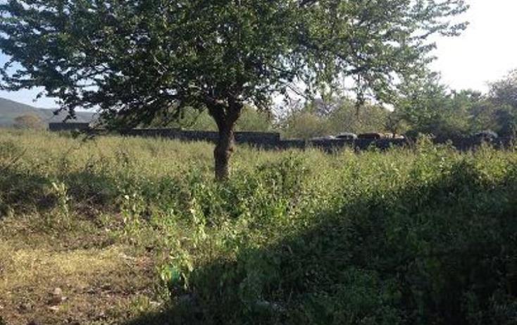 Foto de terreno habitacional en venta en  1, tezoyuca, emiliano zapata, morelos, 1544200 No. 05