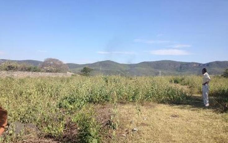 Foto de terreno habitacional en venta en  1, tezoyuca, emiliano zapata, morelos, 1544200 No. 06