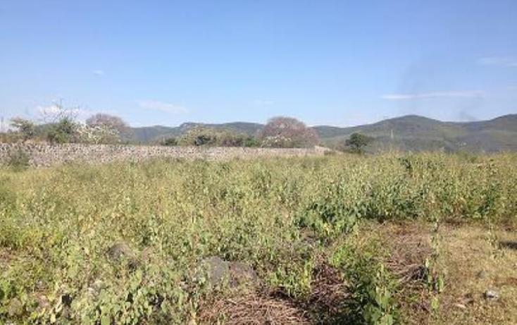 Foto de terreno habitacional en venta en  1, tezoyuca, emiliano zapata, morelos, 1544200 No. 07