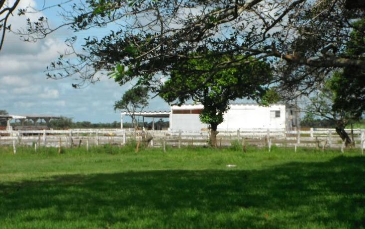 Foto de terreno comercial en venta en  1, tlacotalpan, tlacotalpan, veracruz de ignacio de la llave, 1540598 No. 02