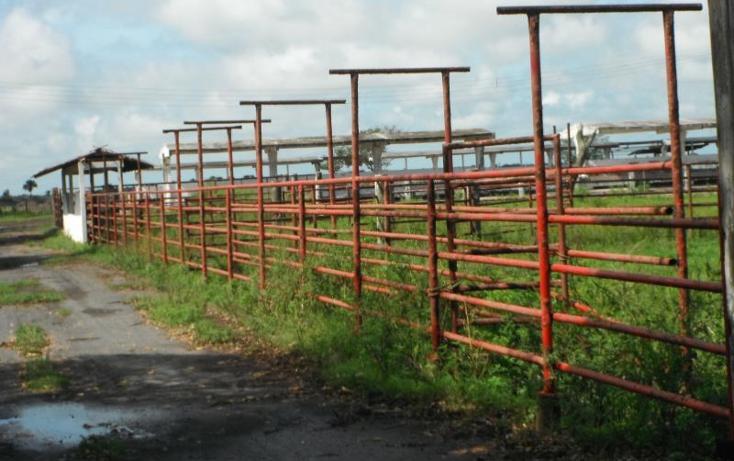 Foto de terreno comercial en venta en  1, tlacotalpan, tlacotalpan, veracruz de ignacio de la llave, 1540598 No. 03