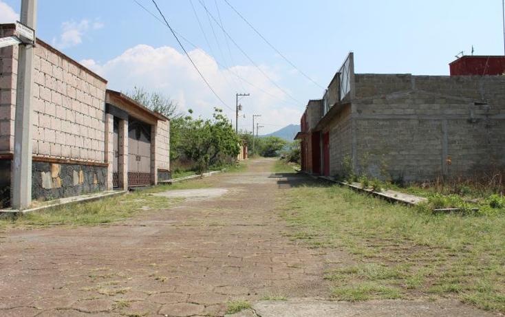 Foto de terreno habitacional en venta en  1, totolapan, totolapan, morelos, 1934434 No. 06