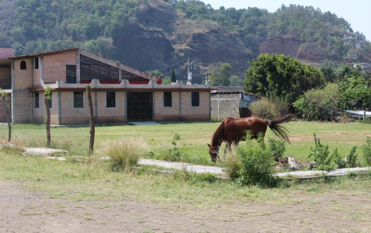 Foto de terreno habitacional en venta en  1, totolapan, totolapan, morelos, 1934434 No. 09