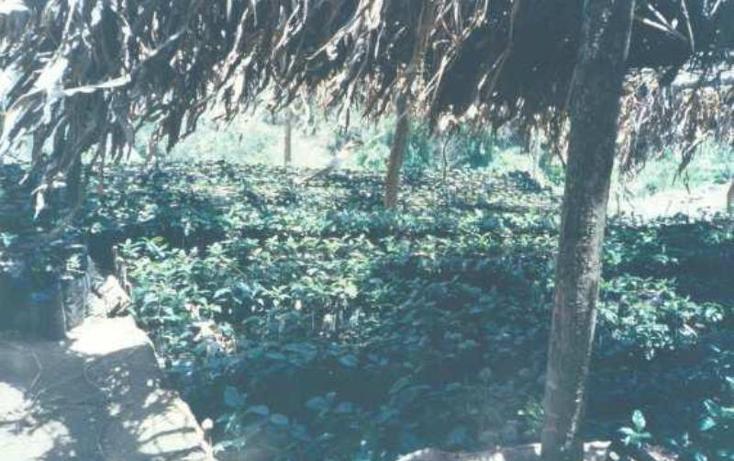 Foto de terreno habitacional en venta en  1, villaflores centro, villaflores, chiapas, 1782316 No. 05