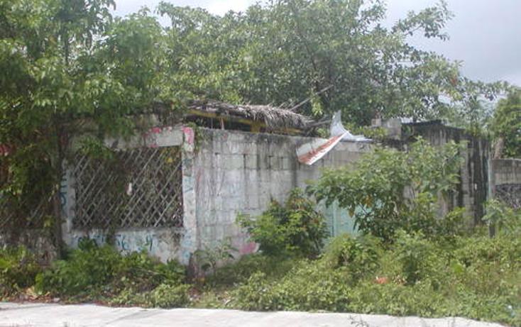 Foto de terreno comercial en venta en  , 10 de abril, cozumel, quintana roo, 1052003 No. 05