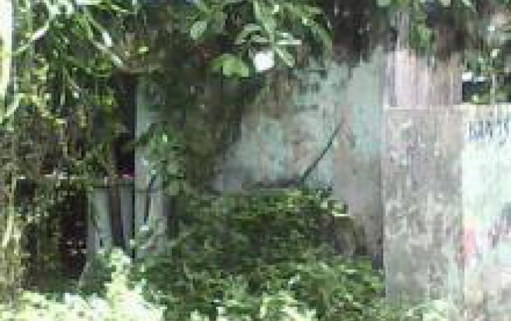 Foto de terreno comercial en venta en, 10 de abril, cozumel, quintana roo, 1052003 no 09
