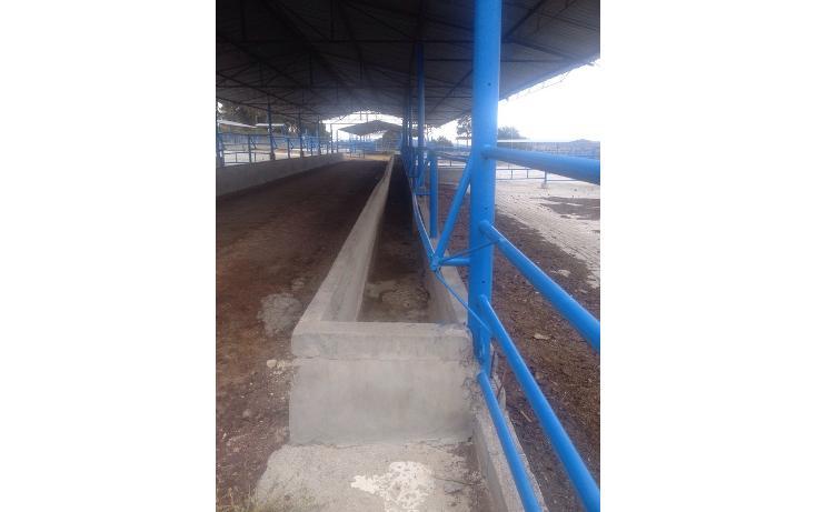 Foto de rancho en venta en  , 10 de mayo, apizaco, tlaxcala, 1338669 No. 01