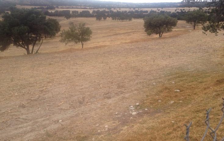 Foto de rancho en venta en  , 10 de mayo, apizaco, tlaxcala, 1338669 No. 03