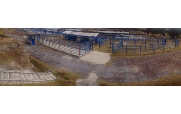 Foto de rancho en venta en  , 10 de mayo, apizaco, tlaxcala, 1338669 No. 04