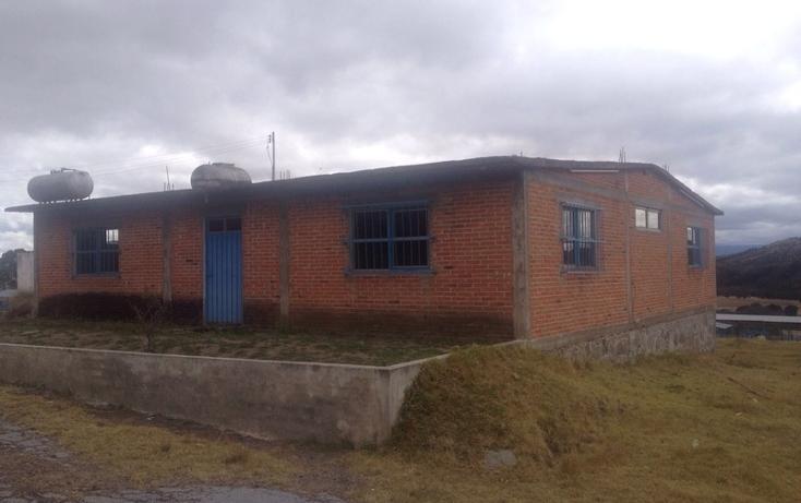 Foto de rancho en venta en  , 10 de mayo, apizaco, tlaxcala, 1338669 No. 06