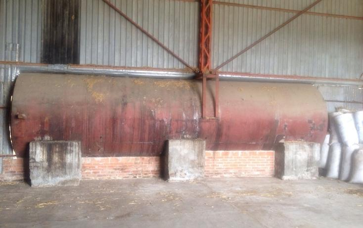 Foto de rancho en venta en  , 10 de mayo, apizaco, tlaxcala, 1338669 No. 10