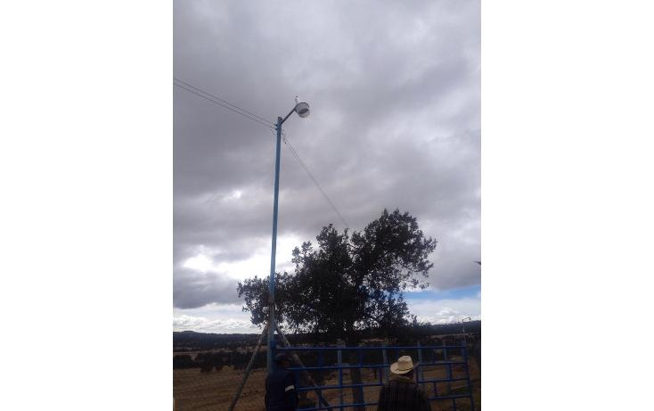 Foto de rancho en venta en  , 10 de mayo, apizaco, tlaxcala, 1338669 No. 13