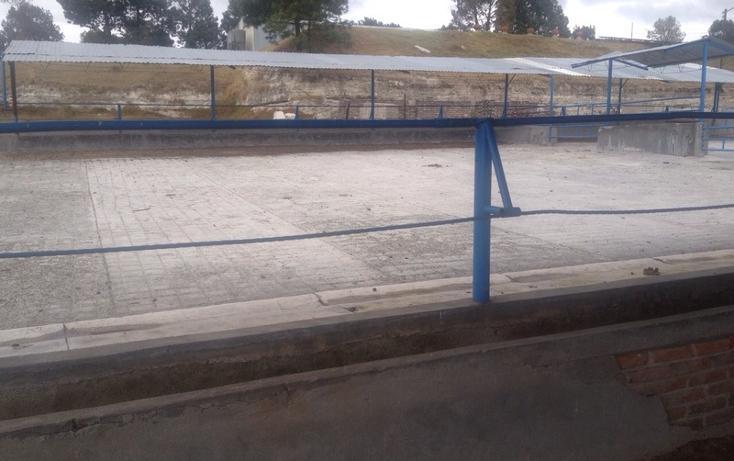 Foto de rancho en venta en  , 10 de mayo, apizaco, tlaxcala, 1338669 No. 14