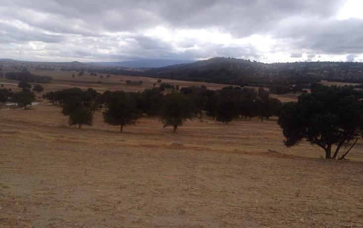 Foto de rancho en venta en  , 10 de mayo, apizaco, tlaxcala, 1338669 No. 16