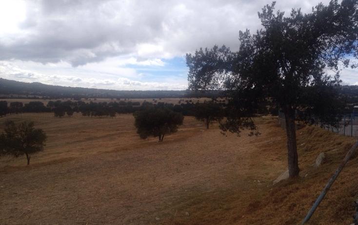 Foto de rancho en venta en  , 10 de mayo, apizaco, tlaxcala, 1338669 No. 17