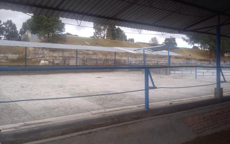 Foto de rancho en venta en  , 10 de mayo, apizaco, tlaxcala, 1338669 No. 18