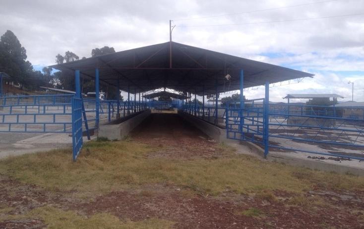 Foto de rancho en venta en  , 10 de mayo, apizaco, tlaxcala, 1338669 No. 20