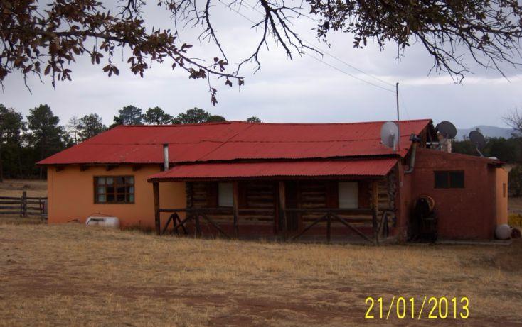 Foto de rancho en venta en, 10 de mayo, guerrero, chihuahua, 1214977 no 03