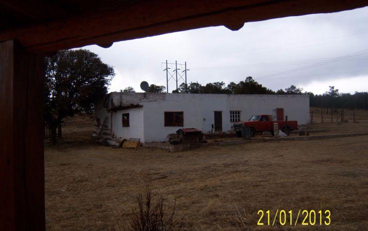 Foto de rancho en venta en, 10 de mayo, guerrero, chihuahua, 1214977 no 05