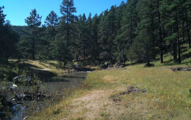 Foto de rancho en venta en, 10 de mayo, guerrero, chihuahua, 1214977 no 07