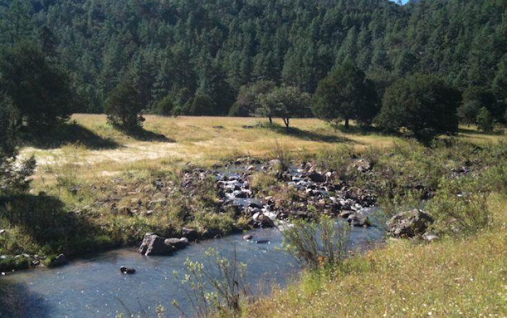 Foto de rancho en venta en, 10 de mayo, guerrero, chihuahua, 1214977 no 08