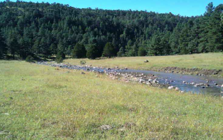 Foto de rancho en venta en, 10 de mayo, guerrero, chihuahua, 1214977 no 09