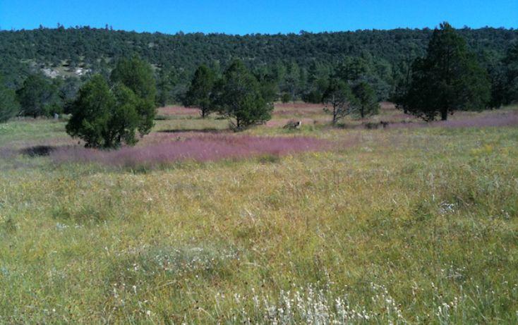 Foto de rancho en venta en, 10 de mayo, guerrero, chihuahua, 1214977 no 10