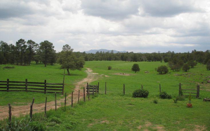 Foto de rancho en venta en, 10 de mayo, guerrero, chihuahua, 1214977 no 13