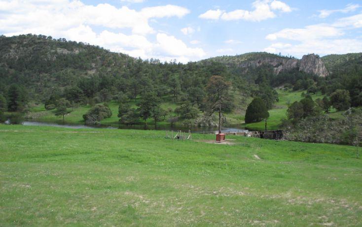 Foto de rancho en venta en, 10 de mayo, guerrero, chihuahua, 1214977 no 14