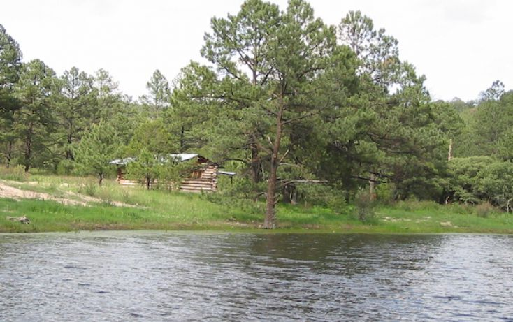 Foto de rancho en venta en, 10 de mayo, guerrero, chihuahua, 1214977 no 15
