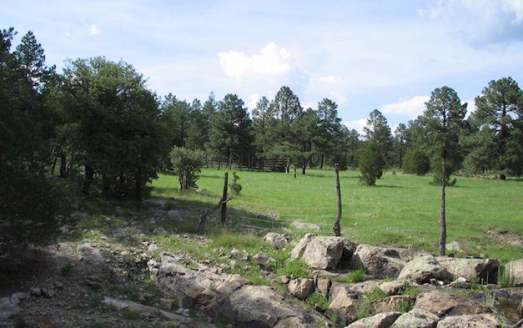 Foto de rancho en venta en, 10 de mayo, guerrero, chihuahua, 1214977 no 16
