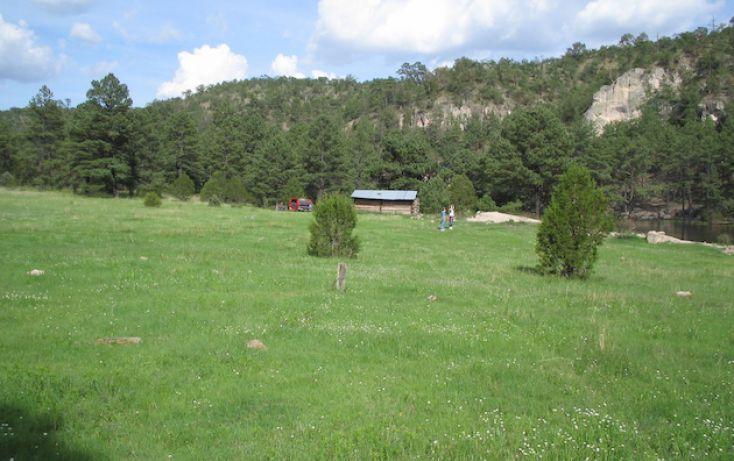 Foto de rancho en venta en, 10 de mayo, guerrero, chihuahua, 1214977 no 17