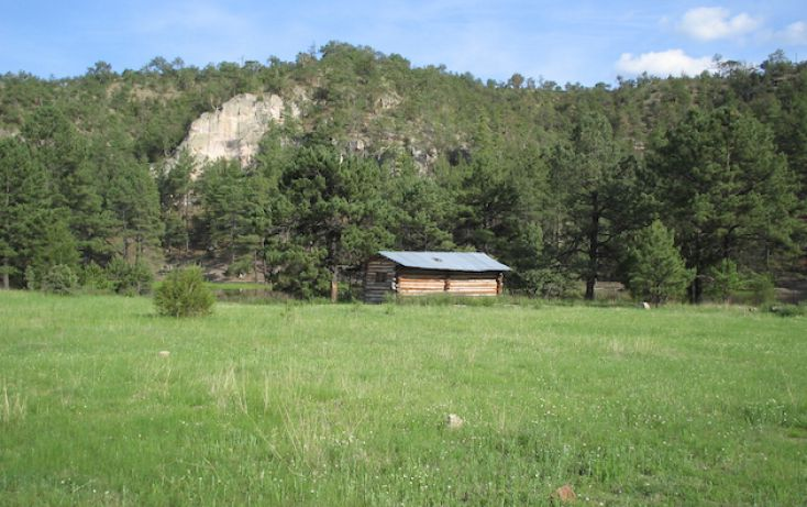 Foto de rancho en venta en, 10 de mayo, guerrero, chihuahua, 1214977 no 18