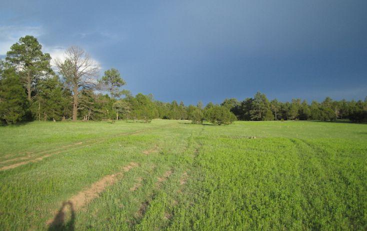 Foto de rancho en venta en, 10 de mayo, guerrero, chihuahua, 1214977 no 25