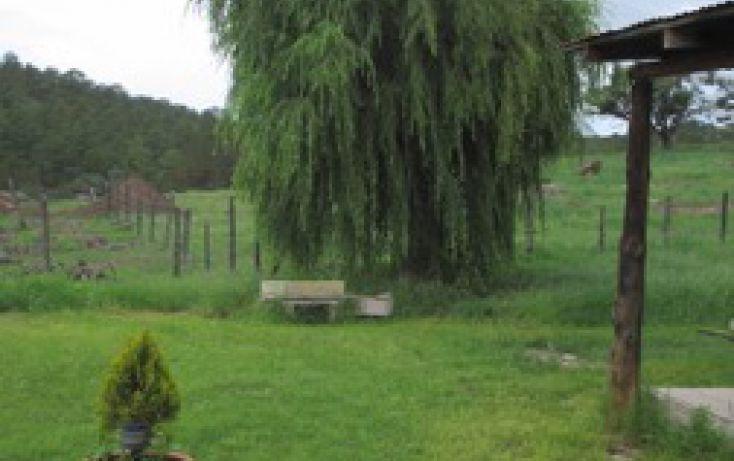 Foto de rancho en venta en, 10 de mayo, guerrero, chihuahua, 1214977 no 28