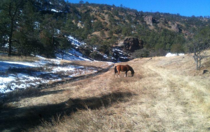 Foto de rancho en venta en, 10 de mayo, guerrero, chihuahua, 1214977 no 32
