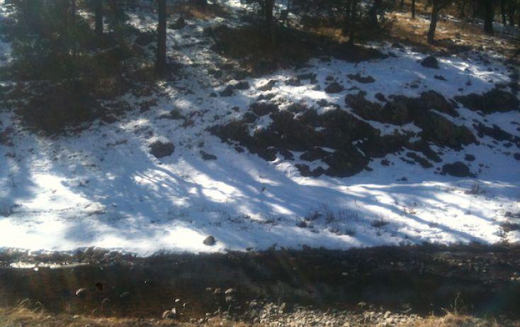 Foto de rancho en venta en, 10 de mayo, guerrero, chihuahua, 1214977 no 33