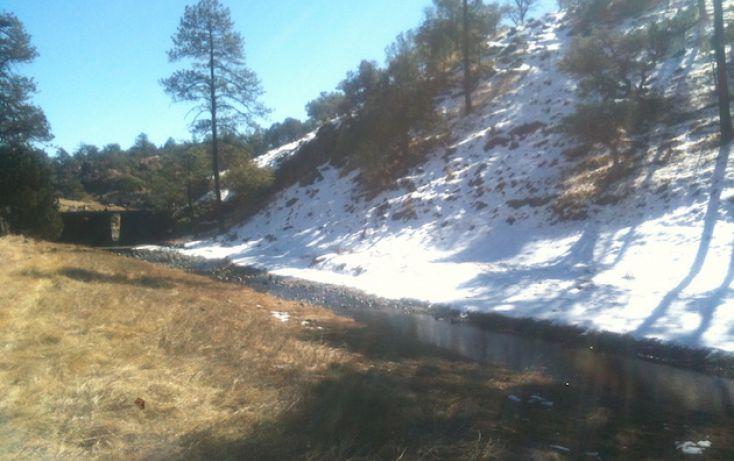 Foto de rancho en venta en, 10 de mayo, guerrero, chihuahua, 1214977 no 34
